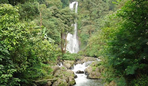Auf Bali und Lombok findet man noch ursprüngliche Natur. Das Bild zeigt  einen Wasserfall auf Bali.